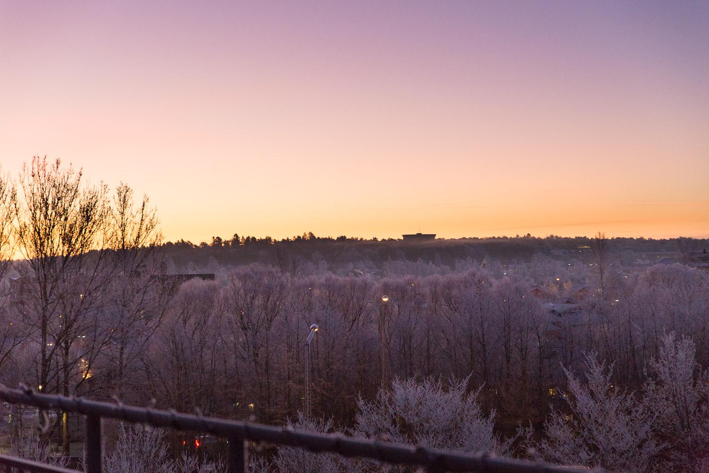 En morgon i frost