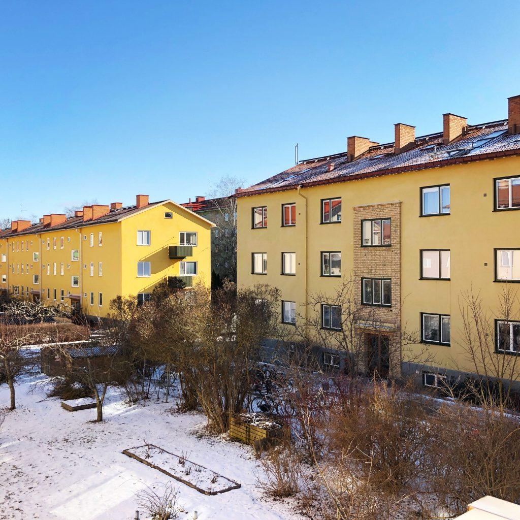 Solsken och fågelkvitter - Amoll.net