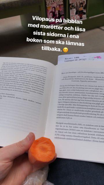 Vila på biblioteket - Amoll.net